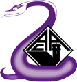 Logo NEF/AAC